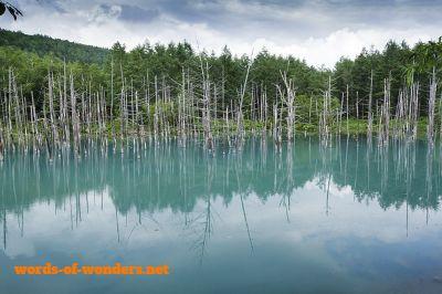 words wonders blue pond