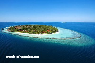 words wonders kurumba
