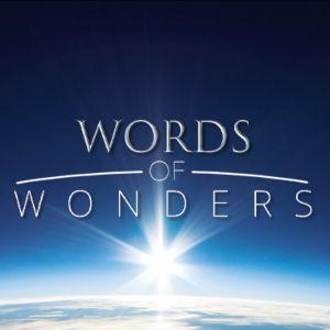 words wonders